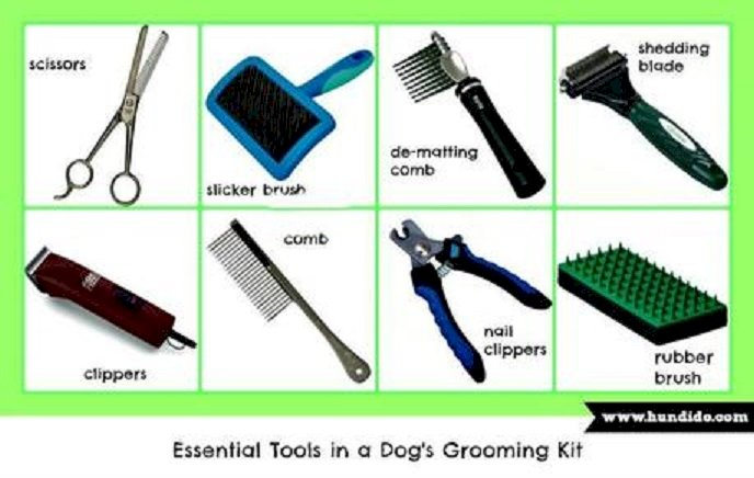 Dog Grooming and Hygiene: Grooming Tools
